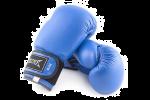 Перчатки боксерские (106)